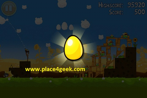 Angry Birds Pignic 1er oeuf d'or